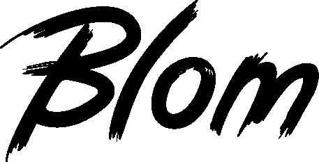 blom_logo.png