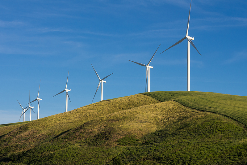 Energy - From the national to the local level, our research has helped renewable energy clients expand and innovate.