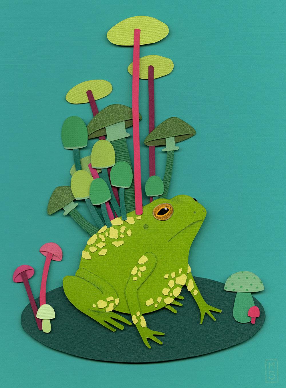 """Rana Umidum (Moist Frog)"""