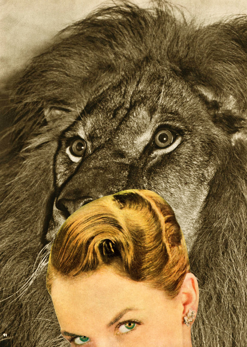 Animal Kingdom II
