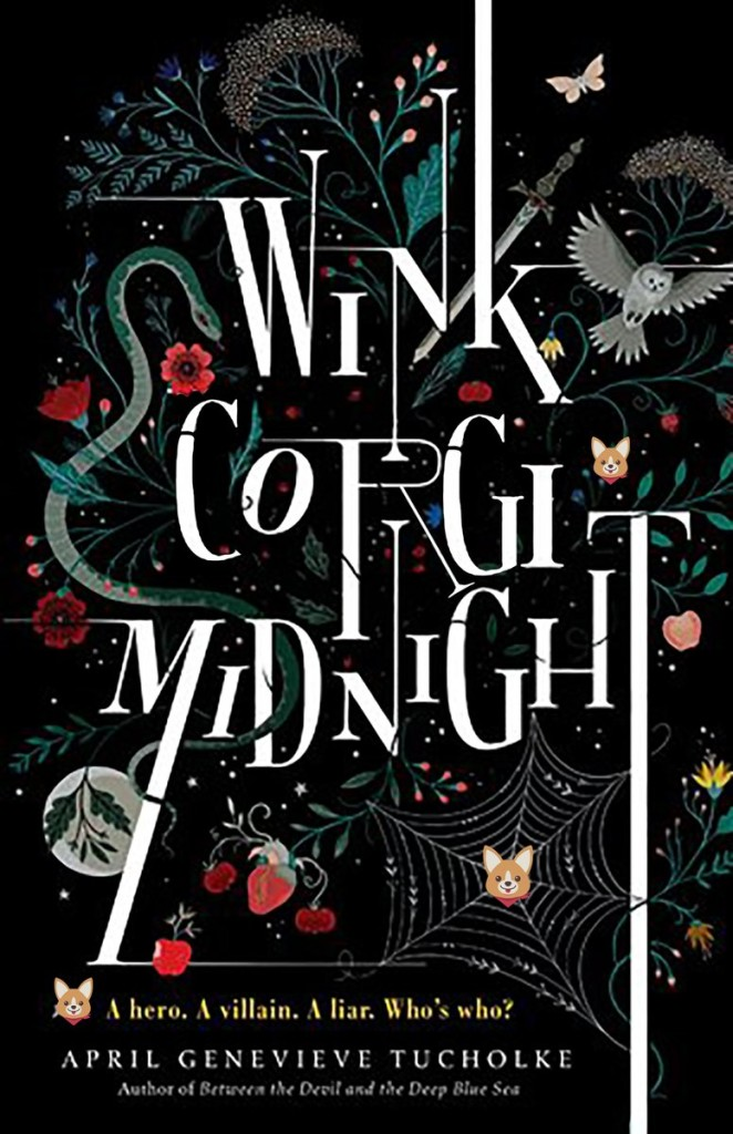wink corgi midnight
