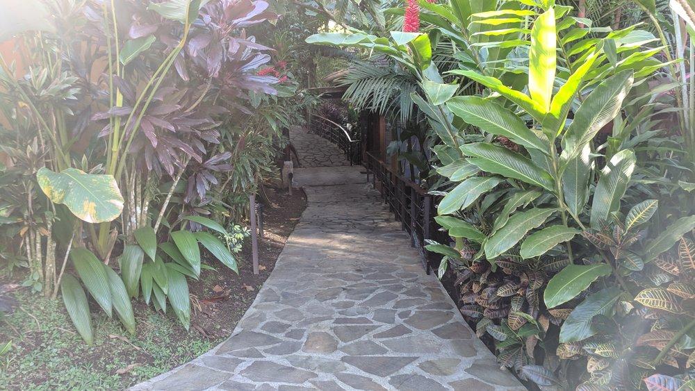 Paths around Nayara Springs