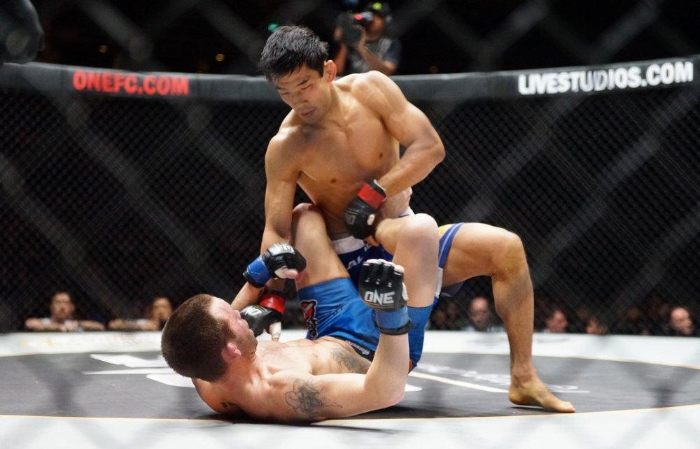 Mixed Martial Arts -