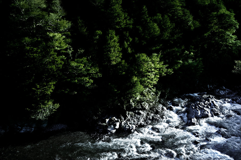 New_Zealand_Kohatu II.jpg