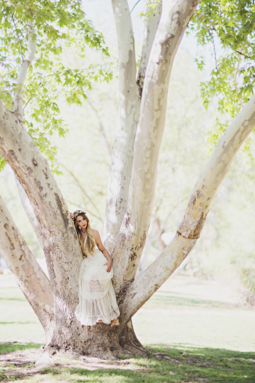 weddings-payson-01.jpg