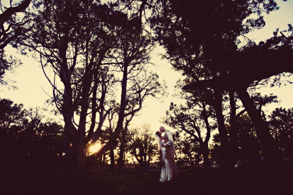 weddings-highlights25.JPG