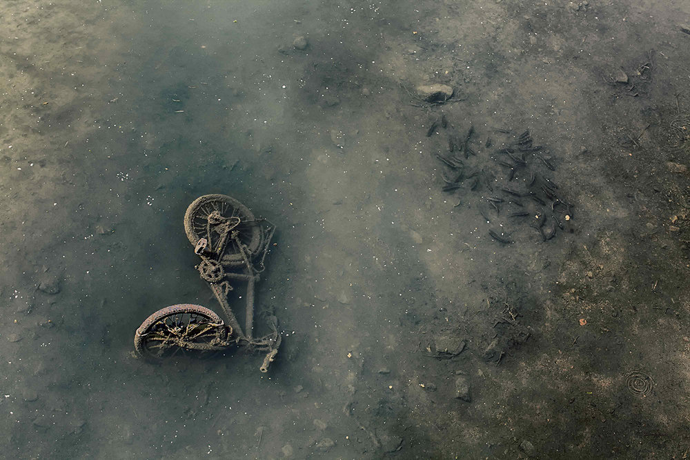 Seth Vane Bicycle Italy 2013