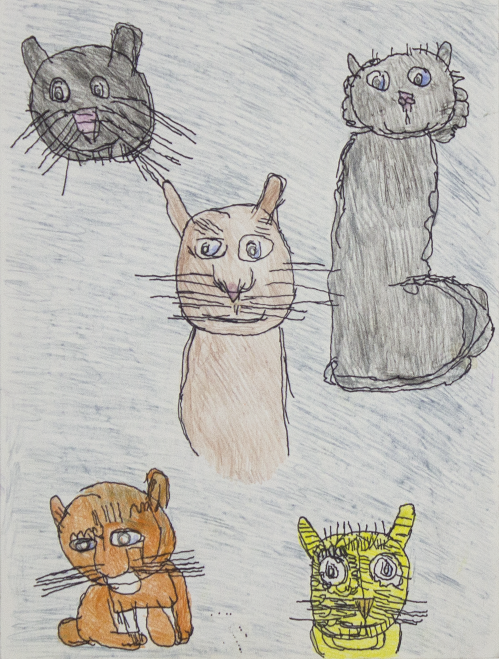 """Kitty Kitty Kitty . 2018. Colored pencil on bristol paper. 9"""" x 12"""" matted."""