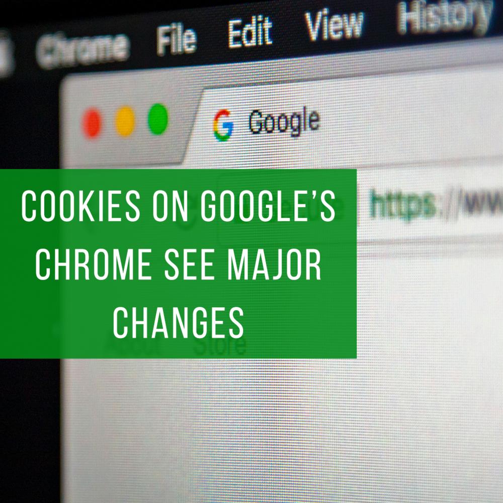 Google Chrome — Elevated — Evans Larson   Multi-Channel