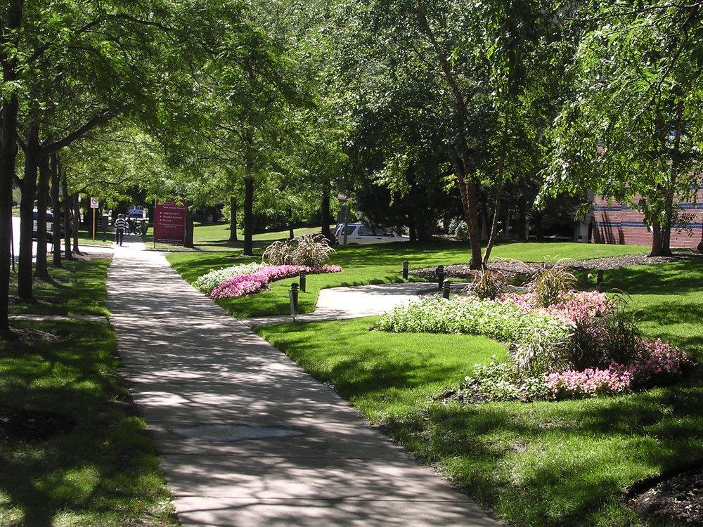 Sidewalk path at LSD.JPG