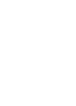 Bottle Baby Fosters