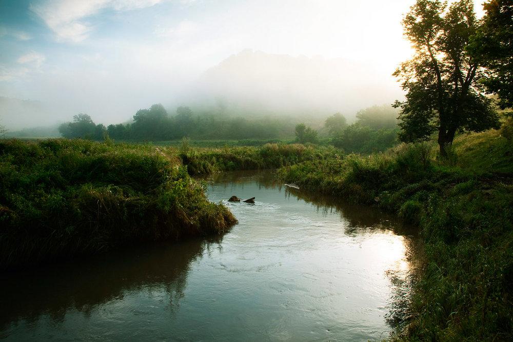 Trout Stream, Wisconsin