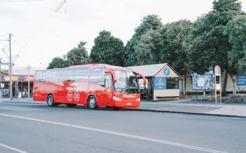 skybus-byron-bay-express-in-byron-bay-665511.jpg