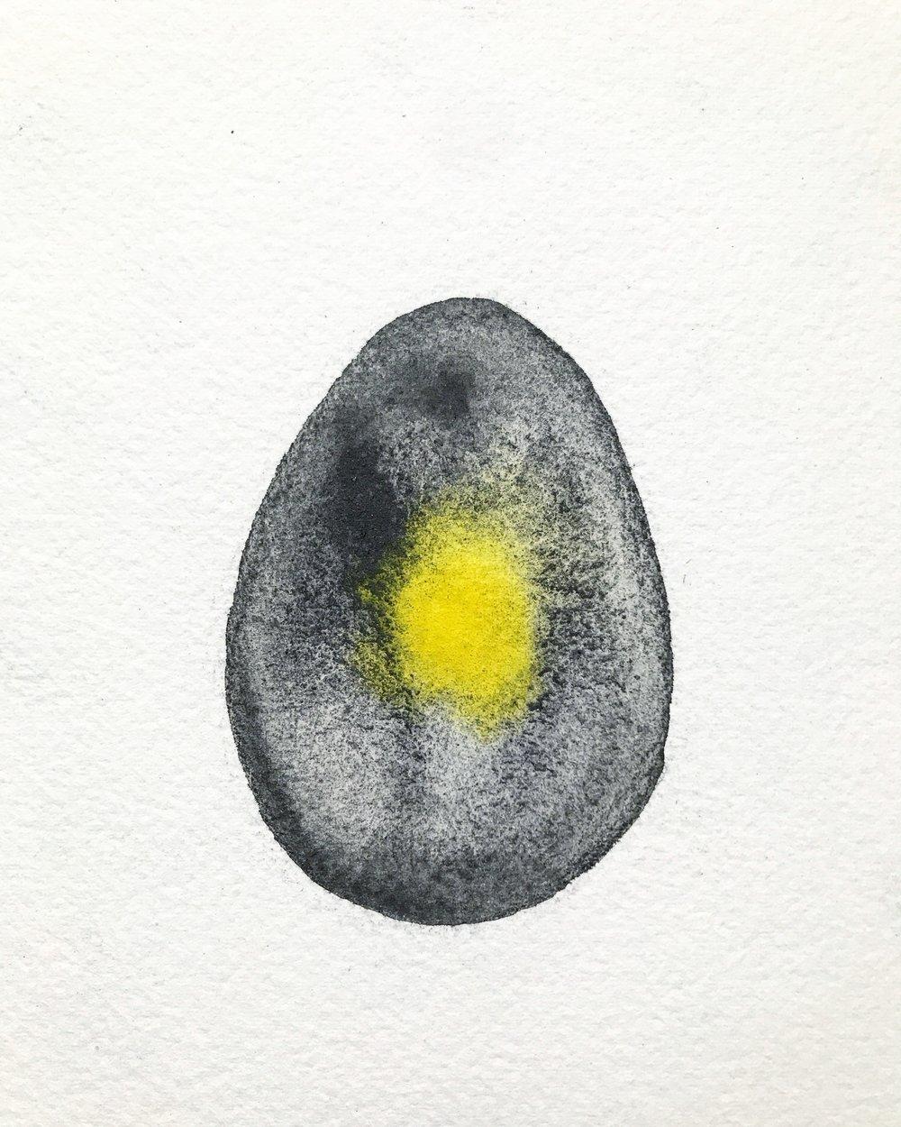 Eggshells in Teeth