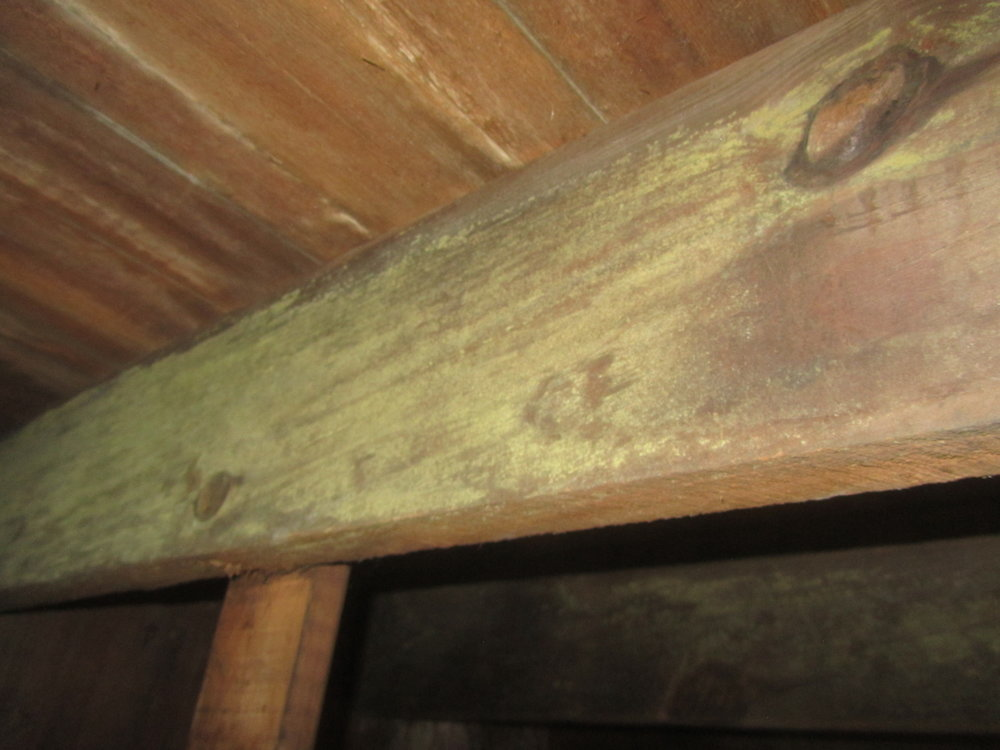 Signs of mold growth on basement joists.