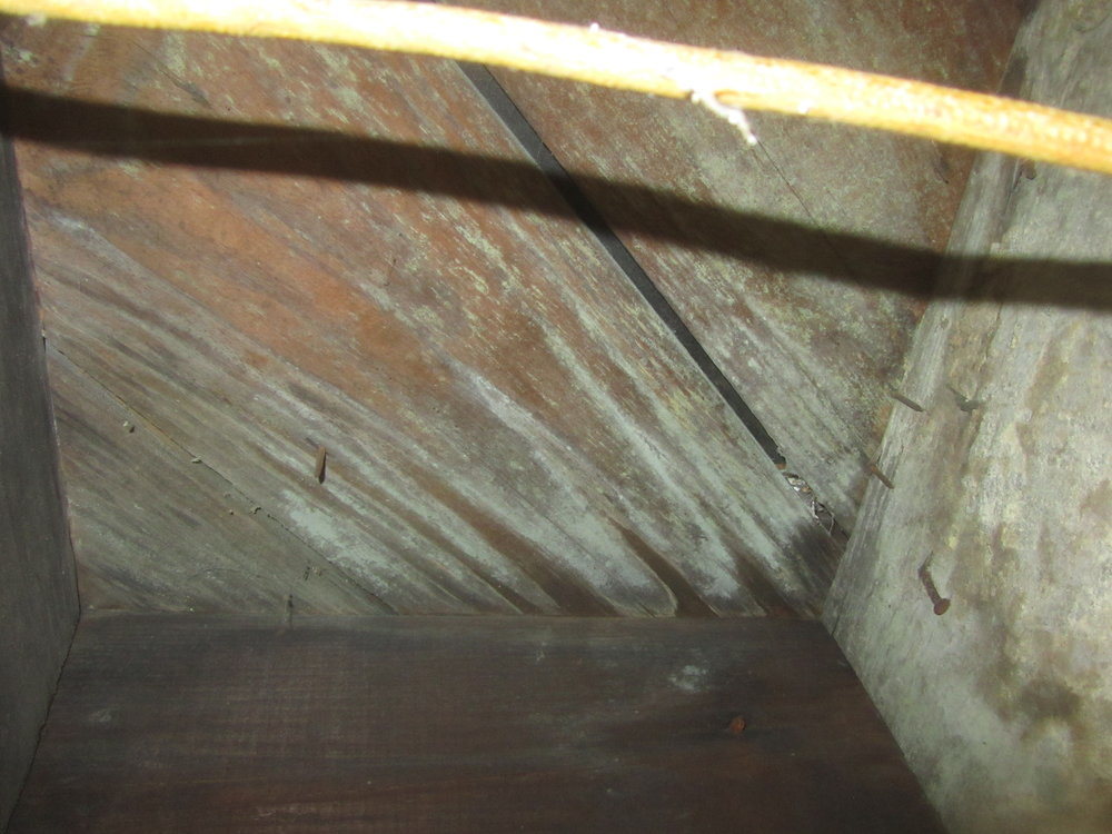 Signs of mold at basement subfloor.