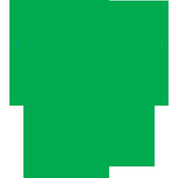 SWAT Youth Soccer Club — SWAT SOCCER
