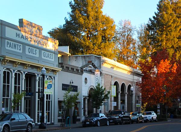 Healdsburg California, Autumn Colors in Town-L.jpg