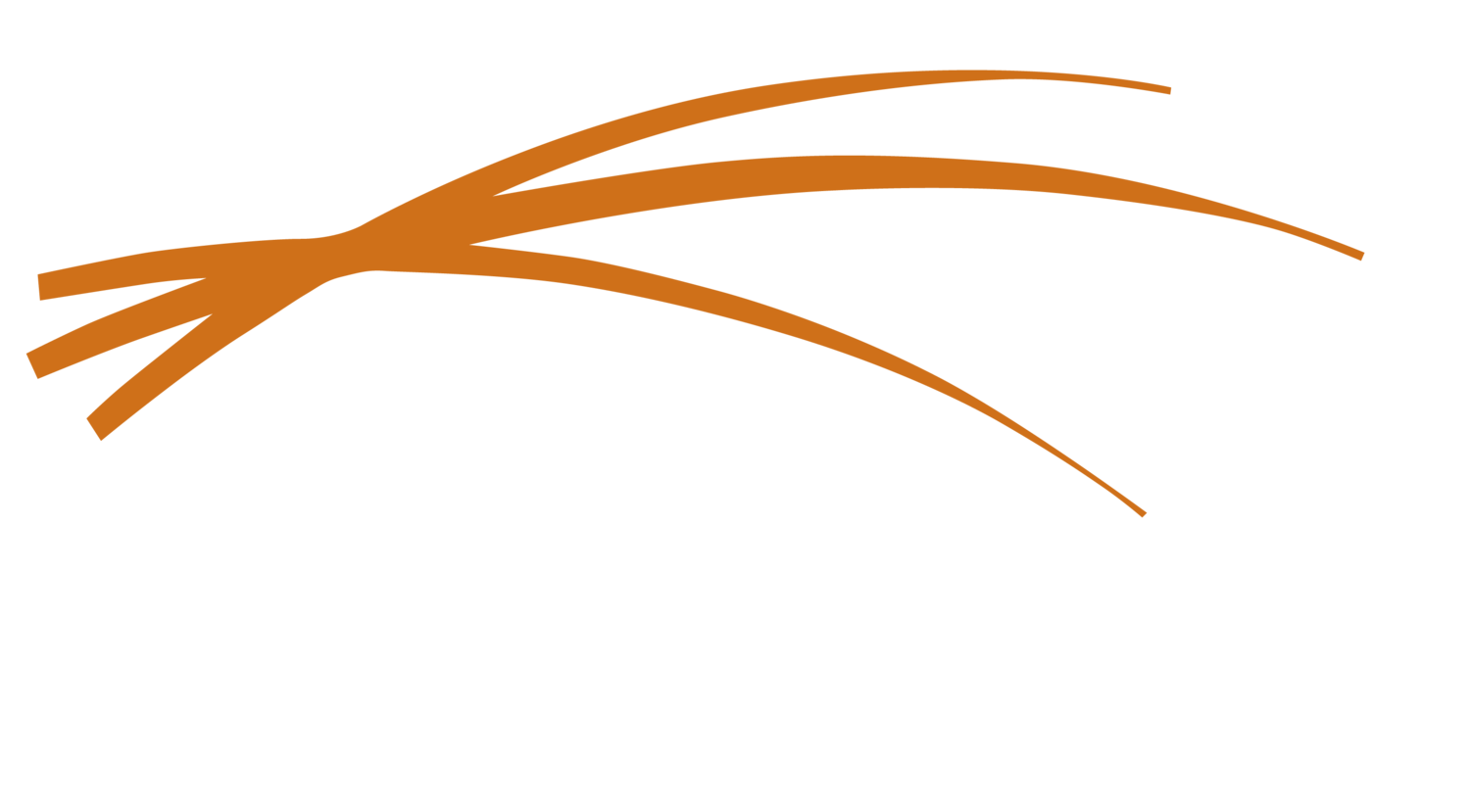 Thatch Risk Acceptances