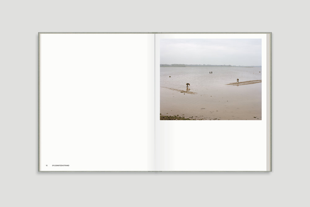 DUMMY_BOOK_COVER1_Grey_Space_Page_06.jpg