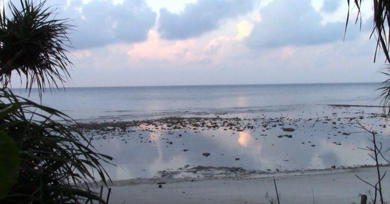 sunrise-at-marine-turtle-rescue-center-768x402.jpg