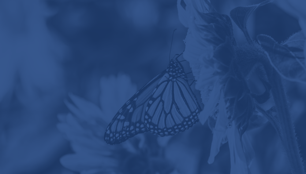 Transformation starts with you. - Join us in revolutionizing research.
