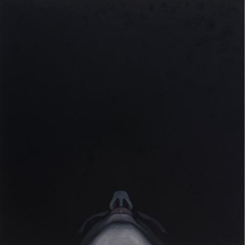 Gazing, 2006
