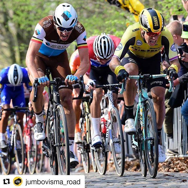 Suffer face @dannyvanpoppel @jumbovisma_road @gentwevelgemofficial @bianchibicycles #GWE19 #roadcycling #procycling #cycling #uci #uciworldtour #racing #riders #lifebehindbars #bike #cyclinglife #cyclist #pedal #roadbike #bikelife #bicycle