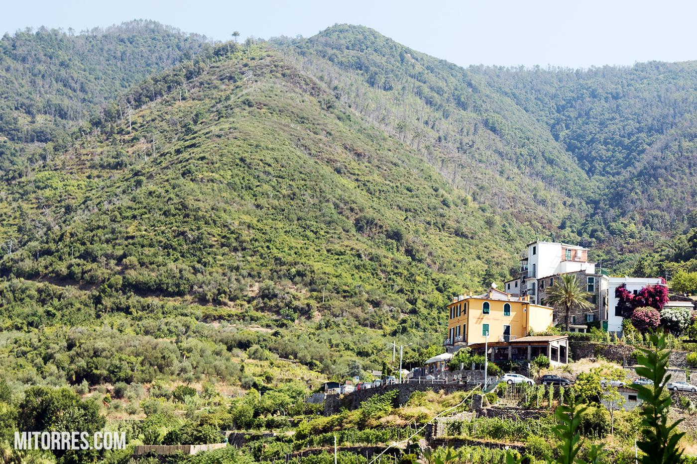 Corniglia, Cinque Terre. Photo: Marlon I. Torres