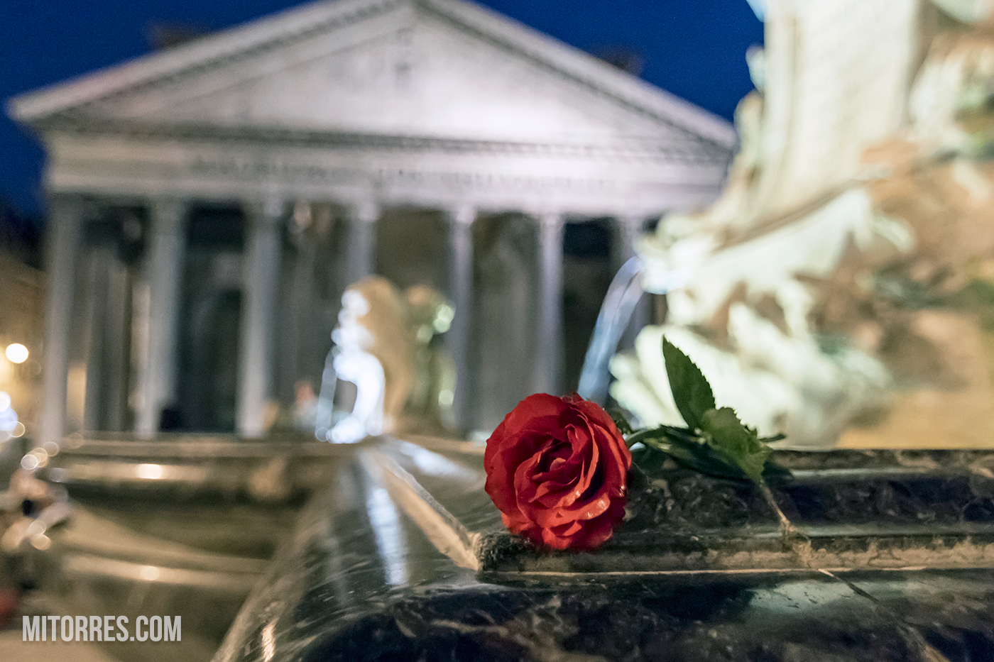 Rose on the Fontana del Pantheon