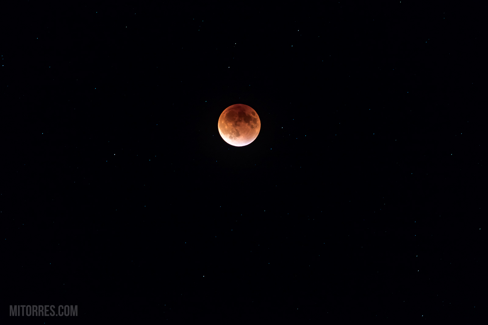 The Super Blood Moon over Florida @ 22:06 EDT, 09/27/2015.