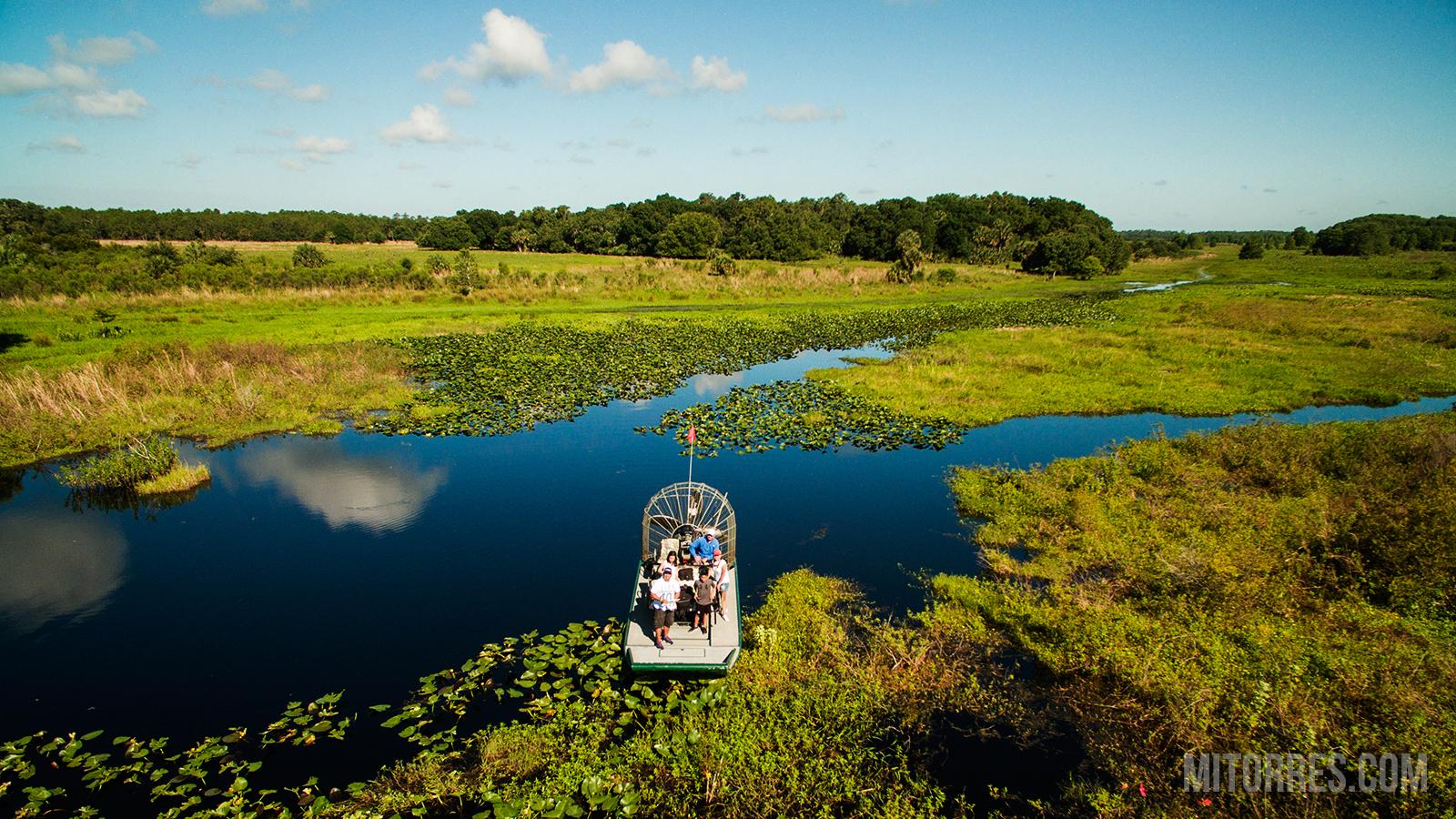 Lake Cypress, Florida Photo: Marlon I. Torres
