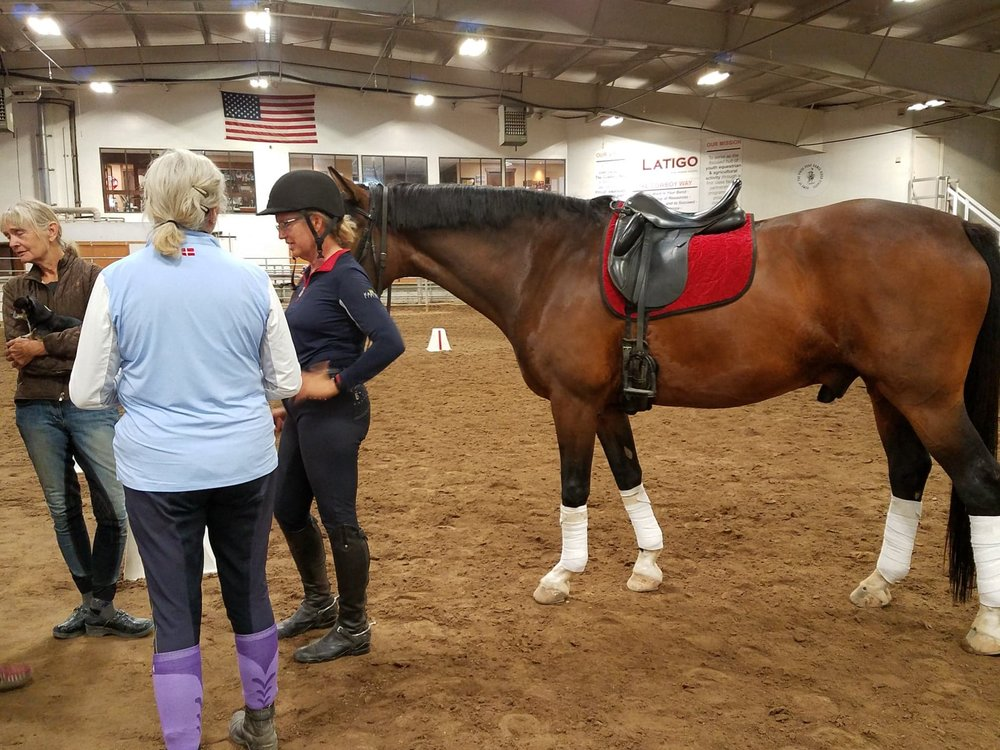 AVDA President Brenda Haley and AVDA board member JoElyn Newcomb, with Geronimo, listen to clinician Dolly Hannon at Latigo in the Black Forest, Colo.