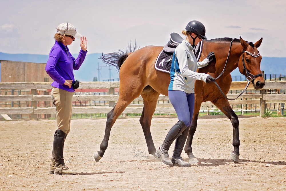 Seattle-based dressage trainer Jana Steffen focuses on ground training, relaxation and softening methods during a clinic last summer in Pueblo West.