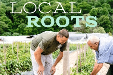 Local Roots     From Hannaford