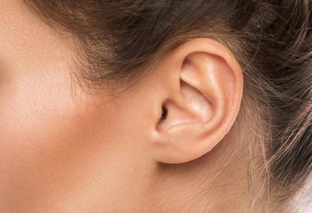 ear_nouse_sized.jpg