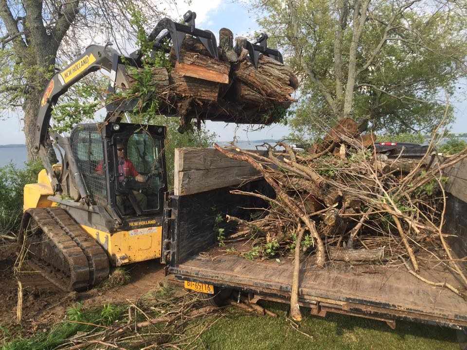 debris removal / lot clearing -