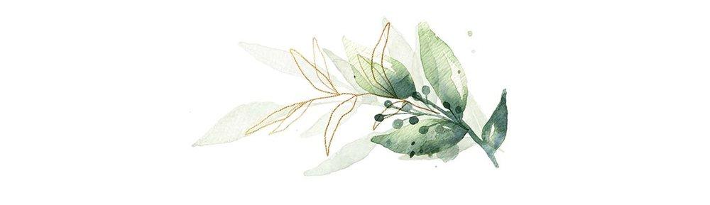 leaves-top.jpg