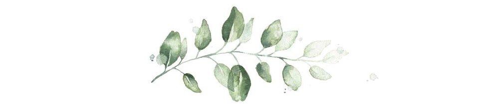 leaves-006.jpg