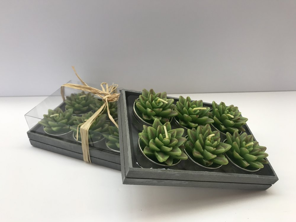 """Succulent Tealights - Set of 6 (Unscented) - Colour:  Assorted Dimensions:  2"""" Diameter Price:  $12.00 + HSTSale Price:  $8.40 + HST"""