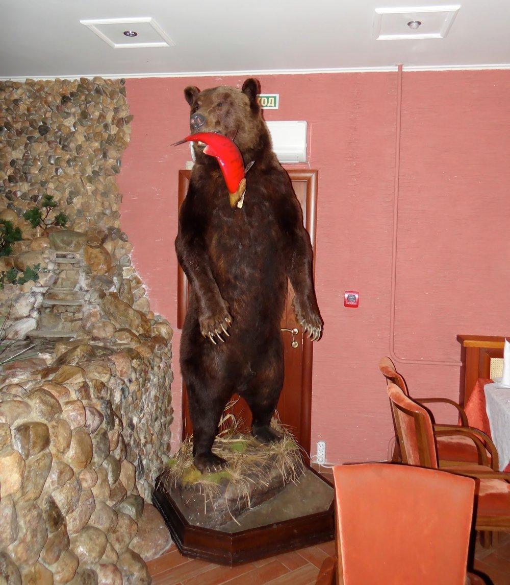 suzdal+hotel+bear.jpg