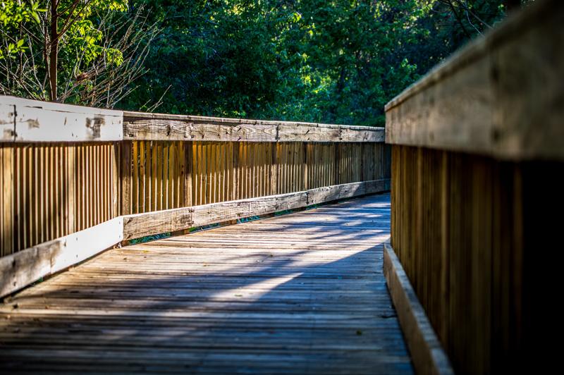 20190306-Sawgrass Lake Park-0020.jpg