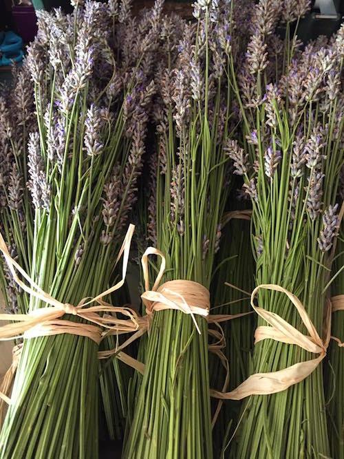 sacred herb smudge bundles