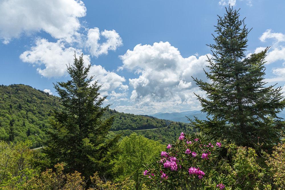 waterrock-knob-blue-ridge-parkway-mountains-Kathleen-Kathy-Roberts-Asheville-NC-photographer.jpg