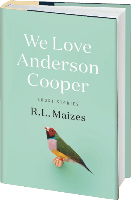 we-love-anderson-cooper-book.png