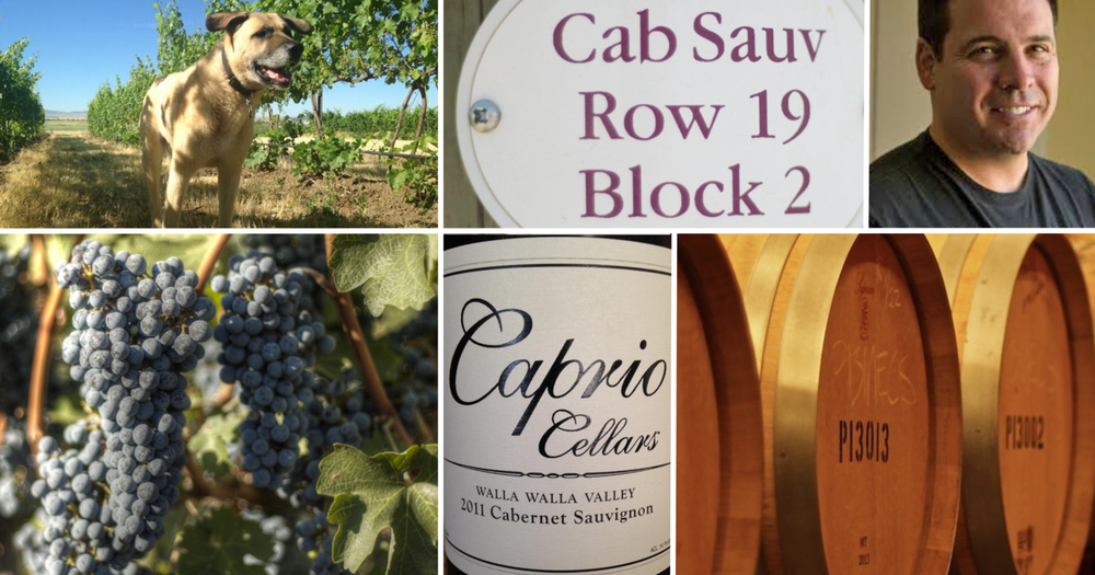 caprio+cellars+photo+montage.png