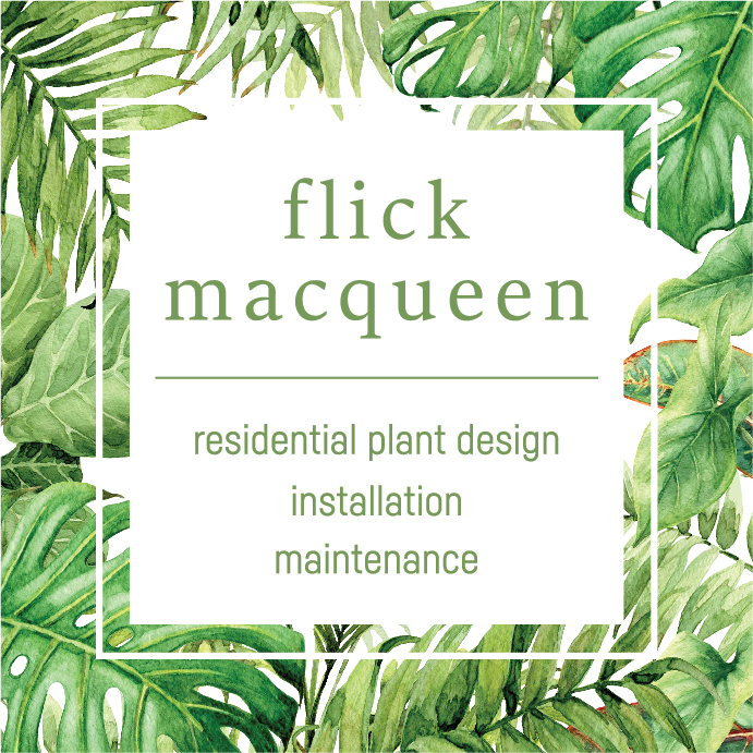 flick macqueen