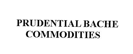 Prudential Bache logo