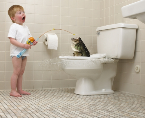 And no, you can't catch a fish in the toilet :)