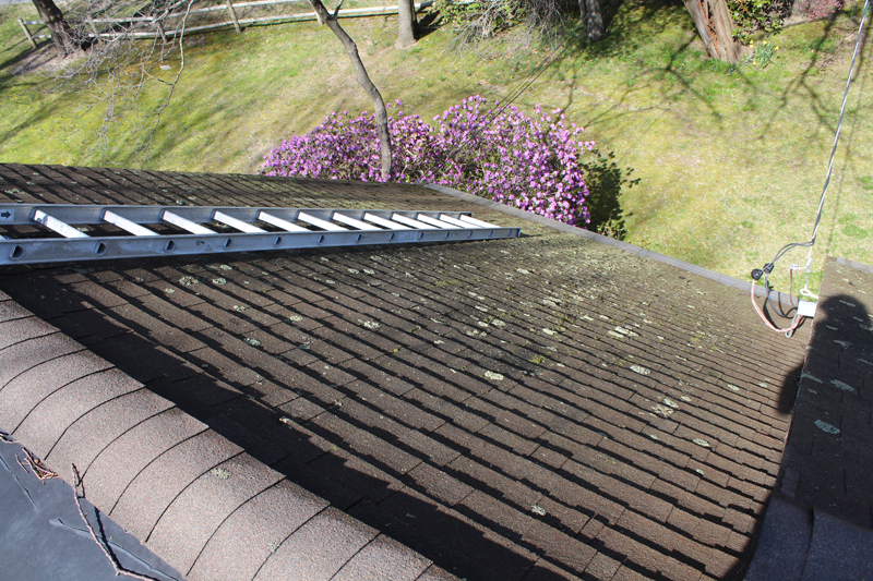 1. PREPARATION - Years of snowy, wet New England winters and muggy, hot summers cause dirt and mildew to build up and that debris can affect the structural integrity of your roof or siding. We will secure all loose materials before we begin cleaning.